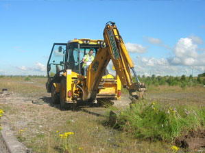 Digger removing turves with orchids at Eurocentral